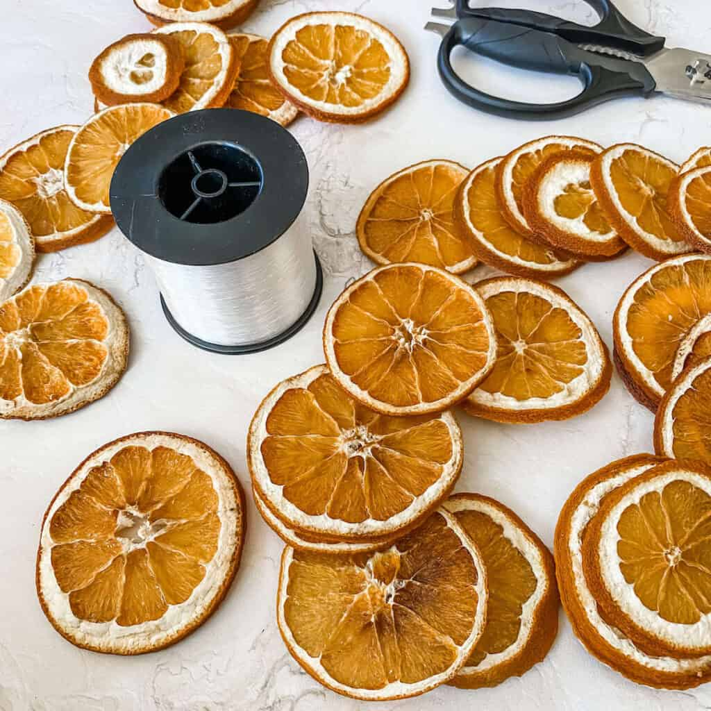 Threading the dried orange slices on fishing wire