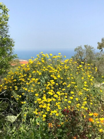 Cyprus weather in April