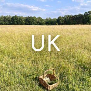 UK travel blog